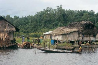 The Niger Delta (file photo).
