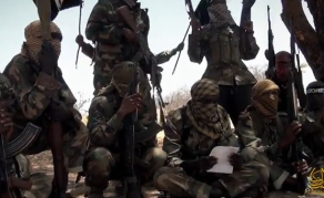 Somali Militants Just 'Getting Lucky' - U.S. Military