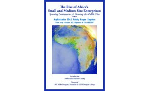 Rise of Africa's Small & Medium Size Enterprises - Robin Sanders