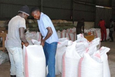 Farmers weigh maize at a National Cereals and Produce Board depot in Elburgon, Molo (file photo).