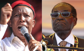 Don't Return Land to White Settlers - Malema's Party to Zimbabwe