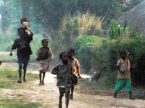Heart of the Congo: Rebuilding Life in the Face of War (2005)