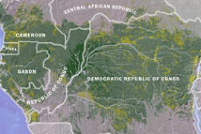 Le bassin forestier du Congo