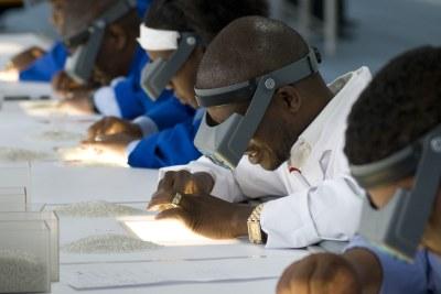 Diamond sorting in Botswana.