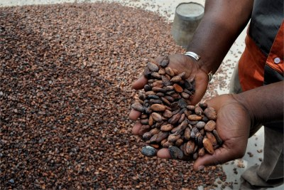 A grower exhibits his cocoa beans.