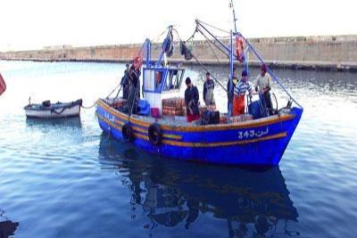 De nombreux projets et des réalisations caractérisent le secteur de la pêche à Alger.