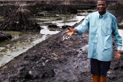 Un déversement de pétrole bien plus grave que Shell ne l'a reconnu a eu lieu dans le delta du Niger.