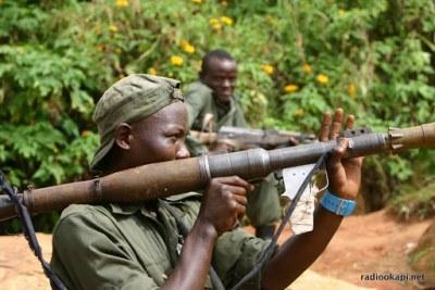 Les performances des FARDCs sur les rebelles ougandais des ADF.