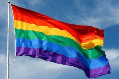 Le drapeau arc-en-ciel, généralement le drapeau de la fierté gay et le drapeau de la fierté LGBT, est un symbole de la fierté lesbienne, gay, bisexuelle et transgenre (LGBT).