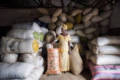 La FAO mise sur une meilleure structuration du commerce informel