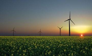 L'Afrique et le défi des énergies renouvelables