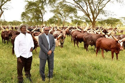 Ugandan President Yoweri Museveni with Sudan's Omar al-Bashir at his Kisozi farm.