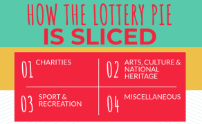 Who Gets South Africa's Lotto Money?