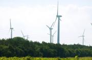 L'ONU souligne l'urgence d'une croissance économique respectueuse du climat