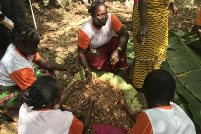 Women at Cayat offered a brief presentation of how cocoa is processed in Ivory Coast.