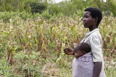 A woman farmer in Mwanza District, Malawi.