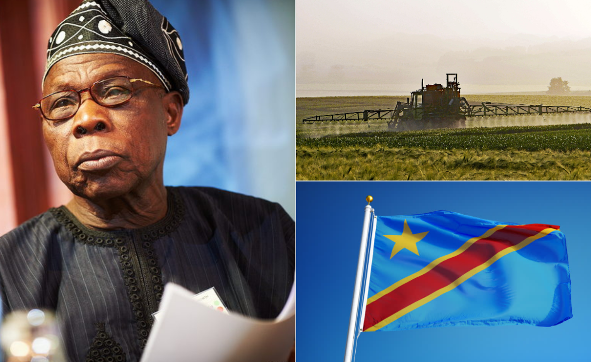 Obasanjo Urges DR Congo to Invest in Agriculture
