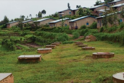Smart Green Villages Tackle Climate Change Resilience in Rwanda