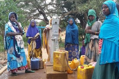 Des femmes remplissent des jerricanes à un point de collecte d'eau dans la région d'Oromia en Ethiopie.